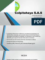 Colpitahaya S MERCADEO