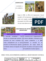 Sector Agropecuaria