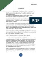 Manual_De_internet.docx