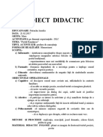 Proiect Didactic Portul Romanesc 03.12.2016