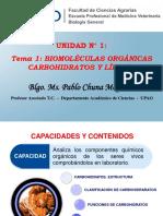 Biomoleculas Organicas Carbohidratos y Lipidos