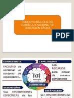 ASPECTOS GENERALES DEL CN.pptx
