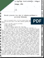 Patsch - Alae et cohortes