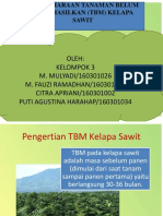 Ppt Tbm Kelapa Sawit