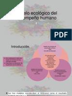 Modelo Ecologico Del Desempeño Ocupacional
