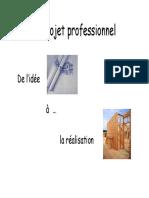 Le Projet Professionnel 2015