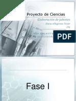 proyectodeljabon-170211025930