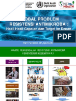 2.Global Problem AMR-NAP