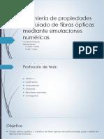 Presentacion 1 - Protocolo de Tesis