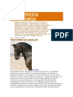 SALUD MEDICA VETERINARIA equinooos.docx