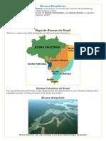 Biomas Brasileiros.docx