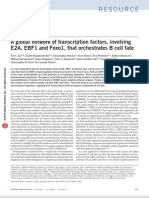 A global network of transcription factors, involving E2A, EBF1 and Foxo1, that orchestrate B cell fate