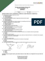 Examen Final 1B 17-18.docx
