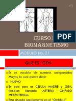 Problemas Hepaticos Biomagnetismo Modulo