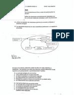 Cuestionario de Enzimas.pdf