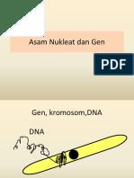 asam nukleat & gen.pptx