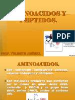 Aminoacidos y Peptidos Pres