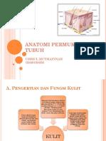 anatomi-dan-fisiologi-kulit.ppt.ppt