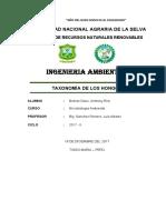 Taxonomia de Los Hongos