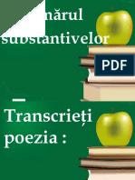 0_numarul_substantivelor.pps
