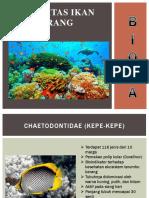 Komunitas Ikan Karang