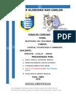 BIOETANOL (1).docx
