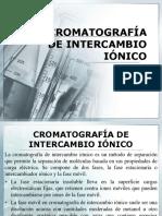 CROMATOGRAFÍA DE INTERCAMBIO IÓNICO.pptx