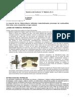 Quimica Del Carbono Fuentes Naturales