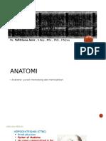 Istilah Dalam Anatomi Dan Pembagian Region Tubuh,