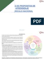 MATRIZ CURRICULO NACIONAL.docx