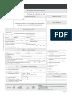 solvisaespanol (1).pdf