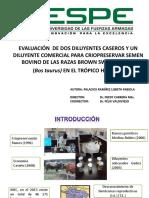 T-ESPE-002713-D.pptx