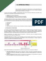 Microbiología, Parasitología e Inmunología Humana - 14. Bacilos Gram (-) I (Enterobacterias)