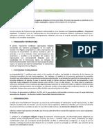 Microbiología, Parasitología e Inmunología Humana - 24. Espiroquetas