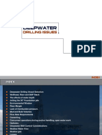 1. Deepwater Drilling Issues