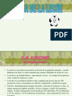 Lácteos.pdf