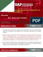 SEMANA 5  COLECCION DE SEMEN.pdf