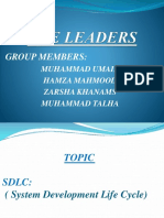 THE LEADERS.pptx