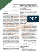 Unidad 05 - Ciclo Celuar-genética
