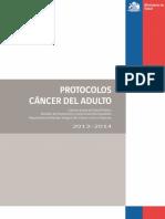 Protocolos Adulto PANDA 2013-2014.pdf