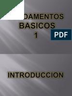 Fundamentos Basicos 1 (Introduccion)