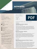 TU PROXIMO CV_1555332391.pdf