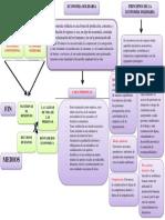MAPA CONCEPTUAL ECONOMIA SOLIDARIA.docx