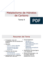 243975372-Metabolismo-Hidratos-de-Carbono-pdf.pdf