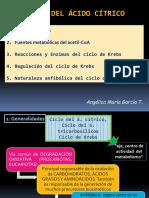 Tema 7. CICLO DE KREBS.pdf
