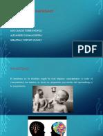 Presentación1 Unidad 3.pptx