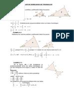 Taller de Semejanza de Triangulos Talle (1)
