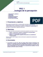 m0.368 20181 Pec1 Percepcion Soluciones