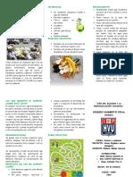 ELABORACIÓN DE COMPOST CASER1.docx