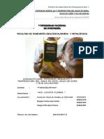 1 Laboratorio de Fico 2010-I Terminado